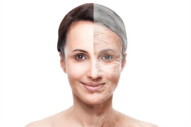 """Wissenswert: Im neuen Internet-Tool """"Faltenspiegel"""" wird der Alterungsprozess der Haut Schritt für Schritt erklärt."""